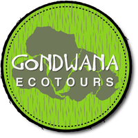 Gondwana Ecotours and small group travel