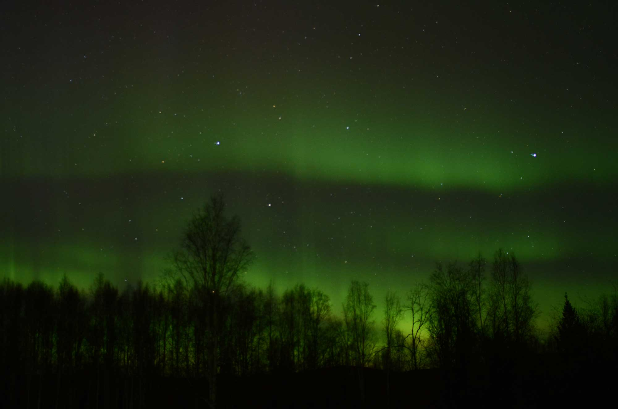 Alaska: Northern Lights Ecotour