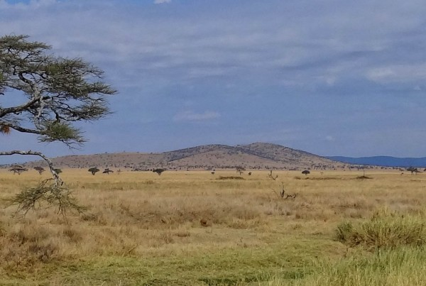 East Africa - Serengeti