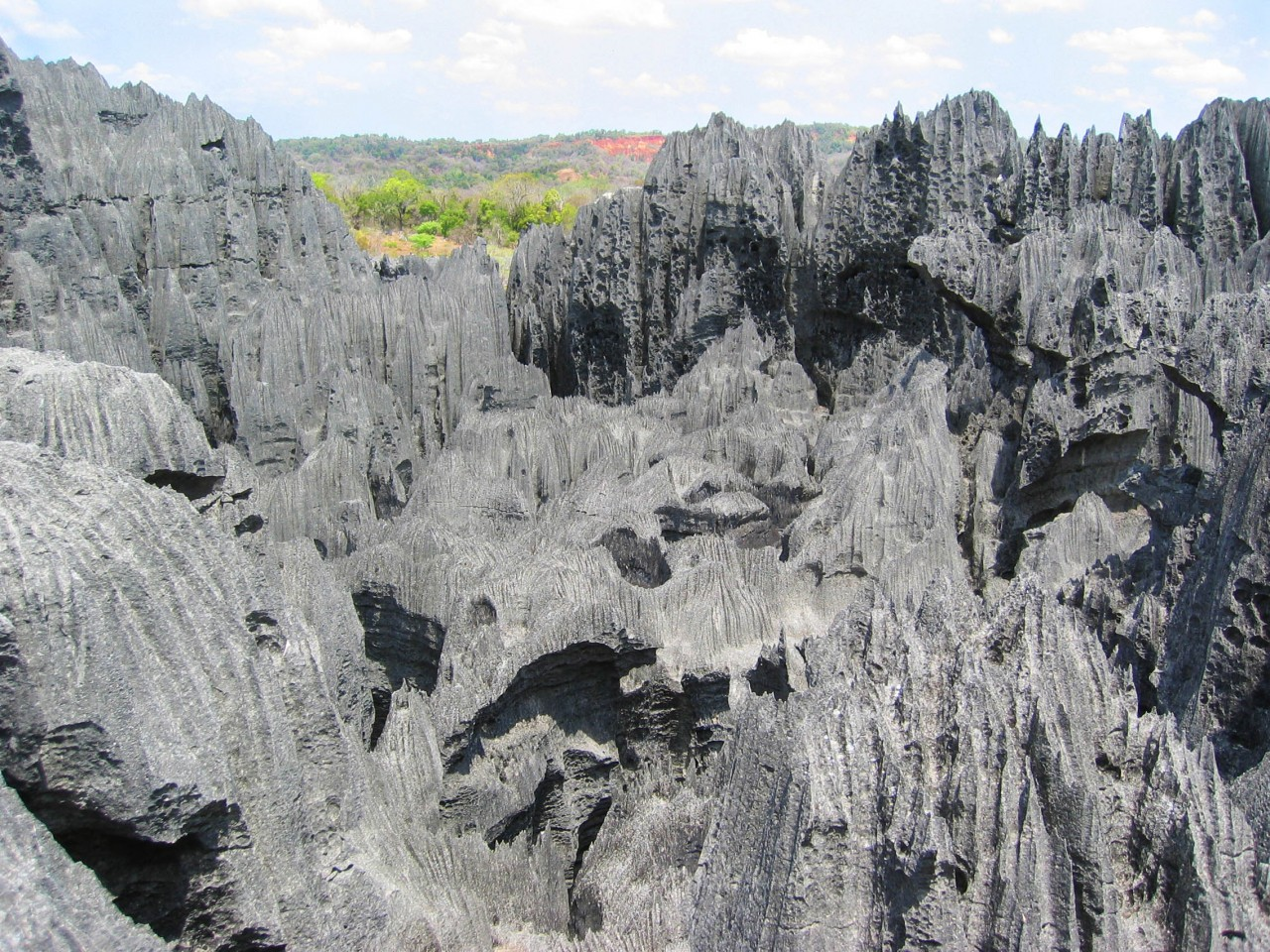 Tsingy National Forest