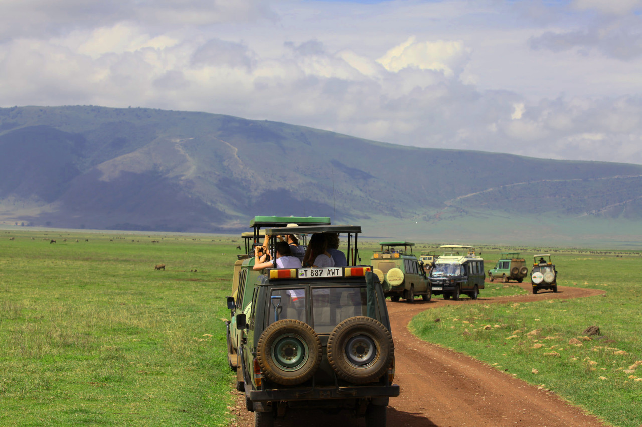 safest places to safari in Africa