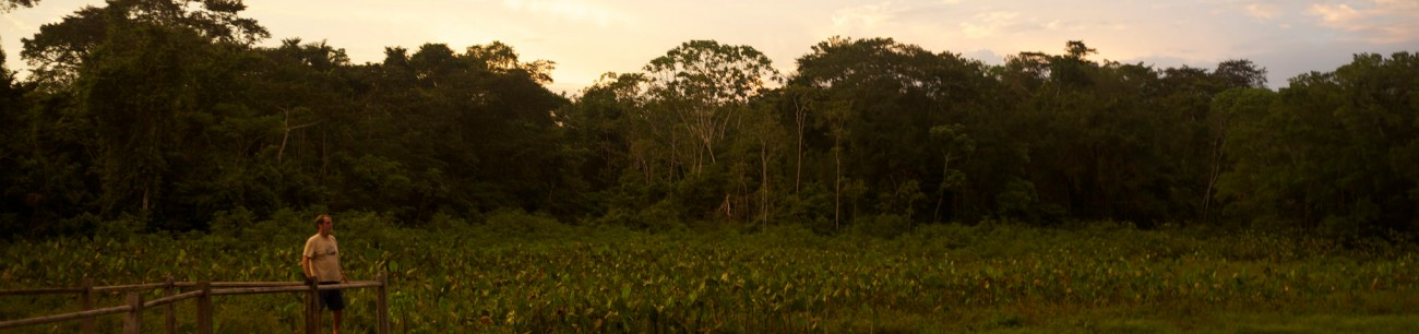Best Place to see the amazon