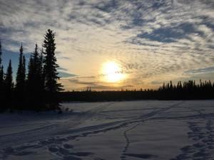 alaska homestead ecotour cultural exchange