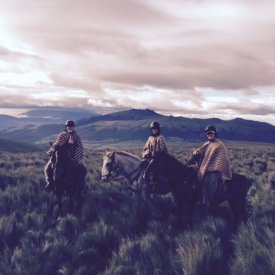 Horseback riding in Cotopaxi National Park